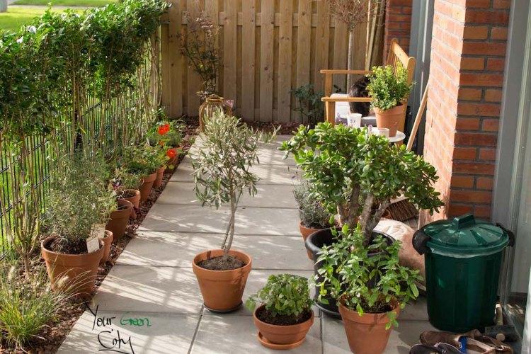 Garden October