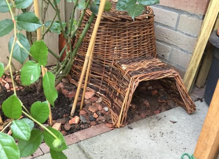 hedgehog house urban garden